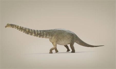 身長等同於一座籃球場 澳新物種「南方泰坦巨龍」擠身全球前15大