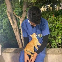 連續工作20天...護士累到要崩潰!這時一隻「流浪貓」出現跳進懷裡:「你辛苦了~」 寵物愛很大