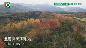 入秋以來最冷一天!日本各地出現11度低溫