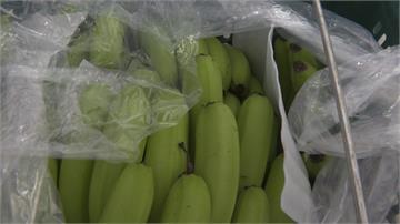 香蕉銷中東運費70賣40?農委會發新聞稿澄清
