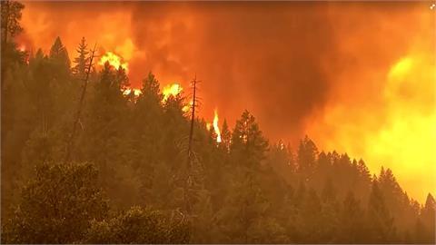美西歷史性乾旱 助燃加州野火狂燒