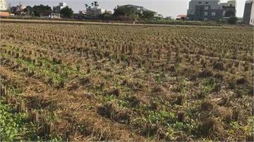 快新聞/嘉南1.9萬公頃農田停灌 每公頃最高補償9.3萬元
