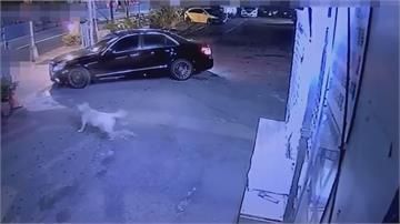 借貸糾紛鬧翻!見對方車被拖吊 趁機撂人砸車