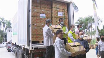 中國禁我鳳梨反掀搶購潮 銷日本總量破5千噸