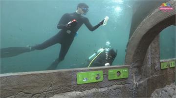台北市立動物園也有潛水員!辛苦風險甘苦談