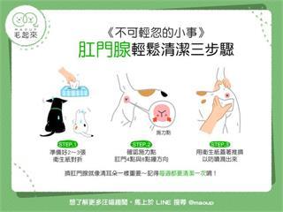【狗貓健康】不可輕忽的小菊花保健法!肛門腺輕鬆清潔3步驟|寵物愛很大