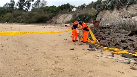 金門海灘驚現7枚未爆彈 軍方緊急移除安置
