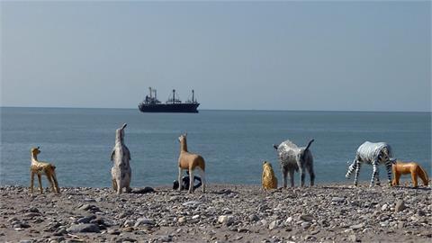 花蓮北濱海灘「動物大進擊」 原來是裝置藝術