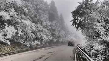 1/7寒流又襲台 北部低溫探8度 高山望降雪