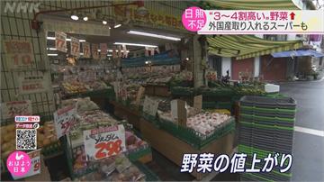 日本上半年天候不佳 蔬果批發價比往年更貴