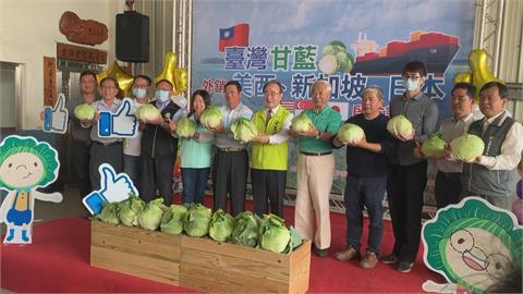 農糧署媒合農產合作社 外銷高麗菜80公噸