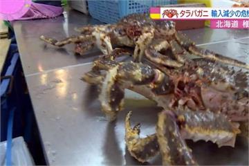 鱈場蟹走私多價高 衝擊日本便當產業