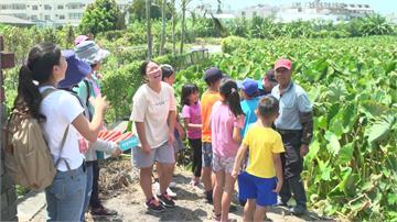 從產地到餐桌! 「食農教育」帶學童認識食物起源