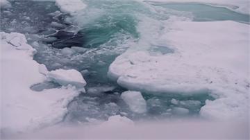 全球暖化 北極海冰覆蓋面積降至40年來次低