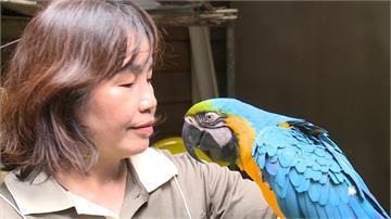 鸚鵡也叫媽!飼養員用心照顧、20年如一日