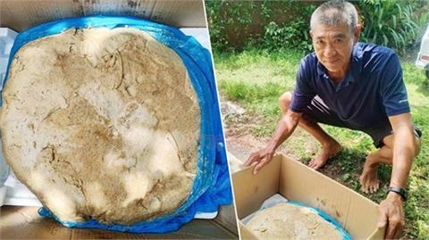 老翁晨跑撿19.5公斤「腥臭結晶物」 一查是「龍涎香」爽賺2500萬