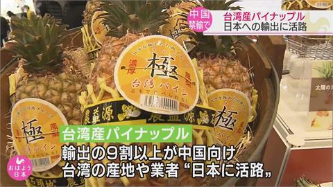台鳳梨日本參展  駐日代表謝長廷感謝訂購