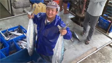 東海岸土魠魚大豐收!肉質肥美饕客爭先搶購