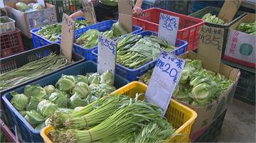 北部菜價蠢蠢欲動 A菜翻倍漲、高麗菜至少漲6成