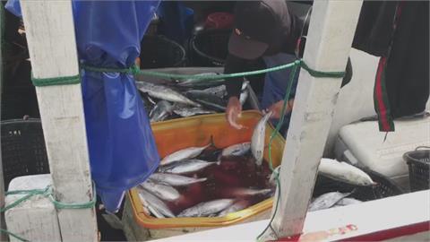 日本決定排放核廢水入大海 我海域首當其衝  「這款魚」危險!