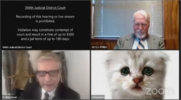 關不掉濾鏡!德州檢察官化身小貓視訊開庭 大喊:我不是貓咪