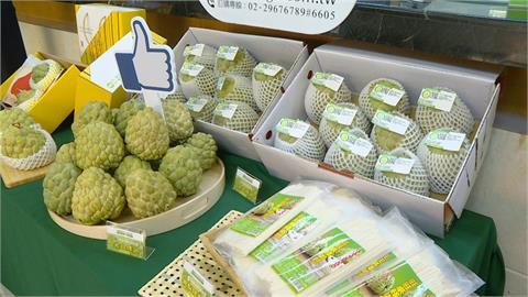 快新聞/中國封殺台灣水果日本伸援手! 購買冷凍釋迦量增2倍讚:果肉很甜