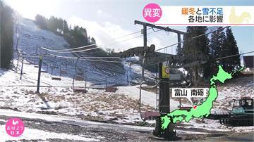 暖化向日葵提早開花 日本山形滑雪場被迫關閉