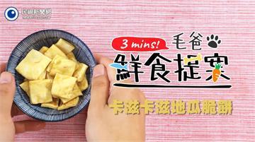【毛爸鮮食提案】用烤箱自製毛孩零食~卡滋卡滋地瓜脆餅