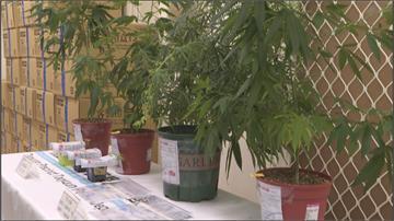溫室帳篷、專用日光燈 桃苗警方連手查獲製毒廠