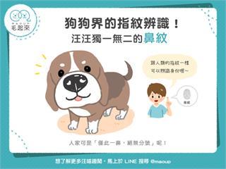 【狗狗小百科】狗狗界的指紋辨識!汪汪獨一無二的鼻紋!|寵物愛很大