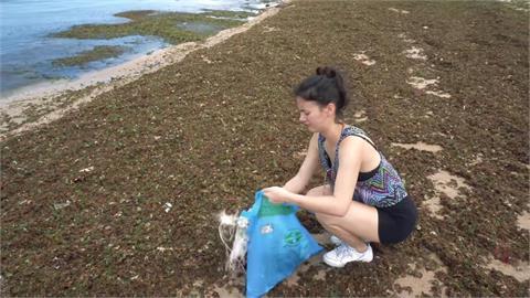 美國籍台灣媳婦淨灘淺水灣 驚見意外景象:要愛護環境
