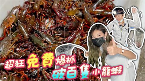 隨便撈就一堆!「國民女友」夜衝野溪滅小龍蝦 3小時暴抓500隻