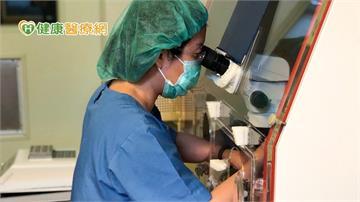 試管嬰兒幕後推手 胚胎師功不可沒!
