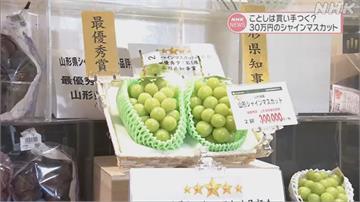 天價!東京2串麝香葡萄 售價逾8萬2千元台幣 平均一顆827元