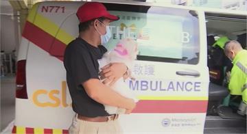 香港寵物救護隊 爭取毛小孩黃金治療時間