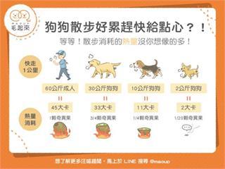 【狗狗健康】狗狗每天散步運動,為什麼體重還是直線上升?|寵物愛很大