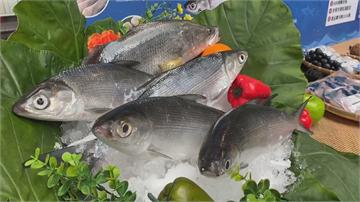 虱目魚游進全台1400間超商!產量增1成多拓新通路 預估帶動6萬片銷量