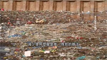 全球/塑膠垃圾難分解 流入海洋造成生態浩劫