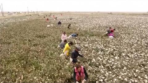 中國迫害新疆維族 人權組織:涉及危害人類罪