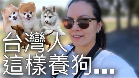 台灣人養狗很誇張?把寵物當小孩照顧 法人妻曝:不解毛孩「坐推車」