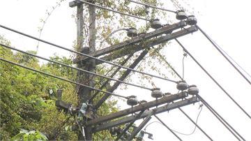 汐止1萬伏特電線起火 罪魁禍首是「它」