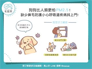 【日常危險】狗狗比人類更怕 PM2.5!缺少鼻毛防護小心呼吸道疾病找上門!
