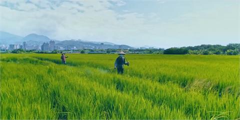 是認命也是韌命!文總揭曉國慶影片 護國神山就是2300萬台灣人