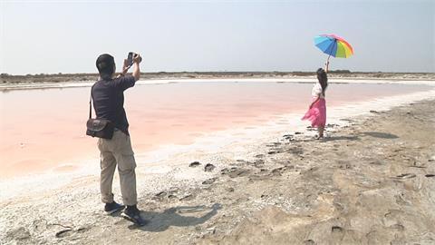 旱地上的紅色海浪 七股鹽灘宛如太空異境
