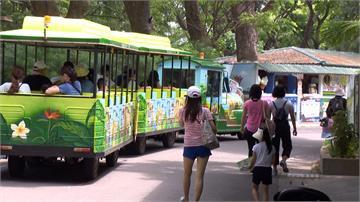 五一連假/旗山老街列熱點 壽山動物園人潮略多