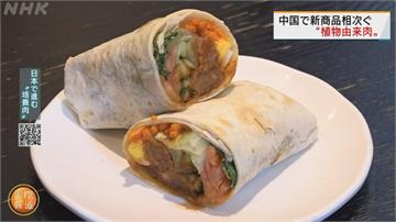 豬瘟肉價飆漲 中國夯吃植物肉