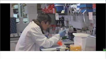 牛津疫苗防護力平均7成最高9成  官員振奮