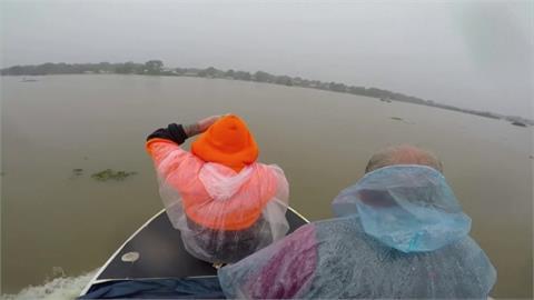 澳洲東部豪雨成災! 洪水逼蜘蛛大軍狂竄避難