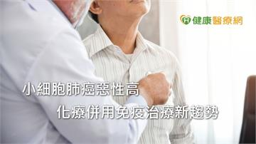 小細胞肺癌惡性高 化療併用免疫治療新趨勢