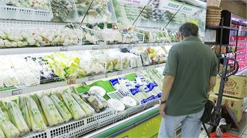 傳統市場葉菜類翻漲一倍 賣場維持原價買氣強強滾